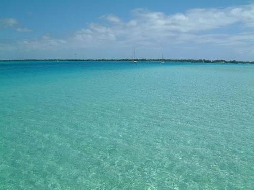 見てください!この海の美しさ!