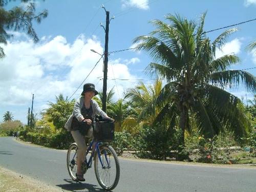 最高の景色を眺めながらのサイクリング